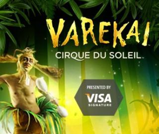 Varekai_324x270.jpg